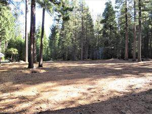 9283 Mountain Meadow Rd, Shingletown, CA 96088 (#21-2168) :: Wise House Realty