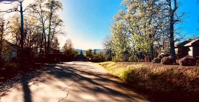 13212 Tierra Heights Road, Redding, CA, CA 96003 (#21-3180) :: Waterman Real Estate