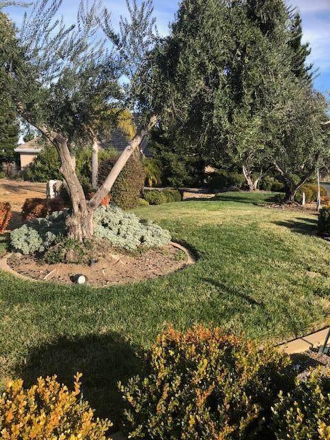 835 Santa Cruz Dr. - Photo 1