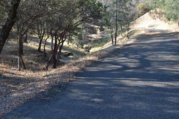 15333 Mountain Shadows Dr - Photo 1