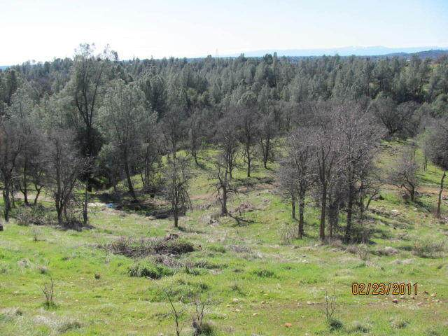 255 Lost Rd - Photo 1