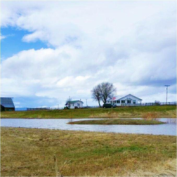 5515 County Road 87 - Photo 1