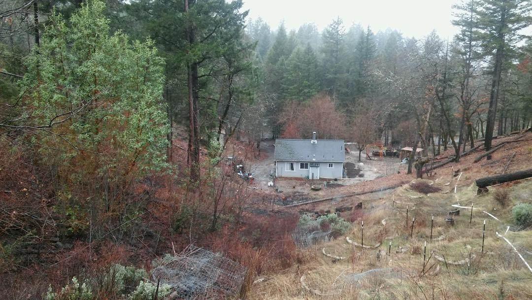 475 Bear Creek Trl - Photo 1