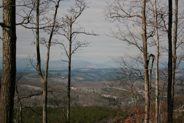 Lot 102 Arbra Mountain Way, Bostic, NC 28018 (#61869) :: Robert Greene Real Estate, Inc.