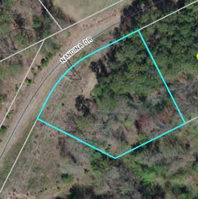 1645542 Nandina Dr, Forest City, NC 28043 (#62151) :: Robert Greene Real Estate, Inc.