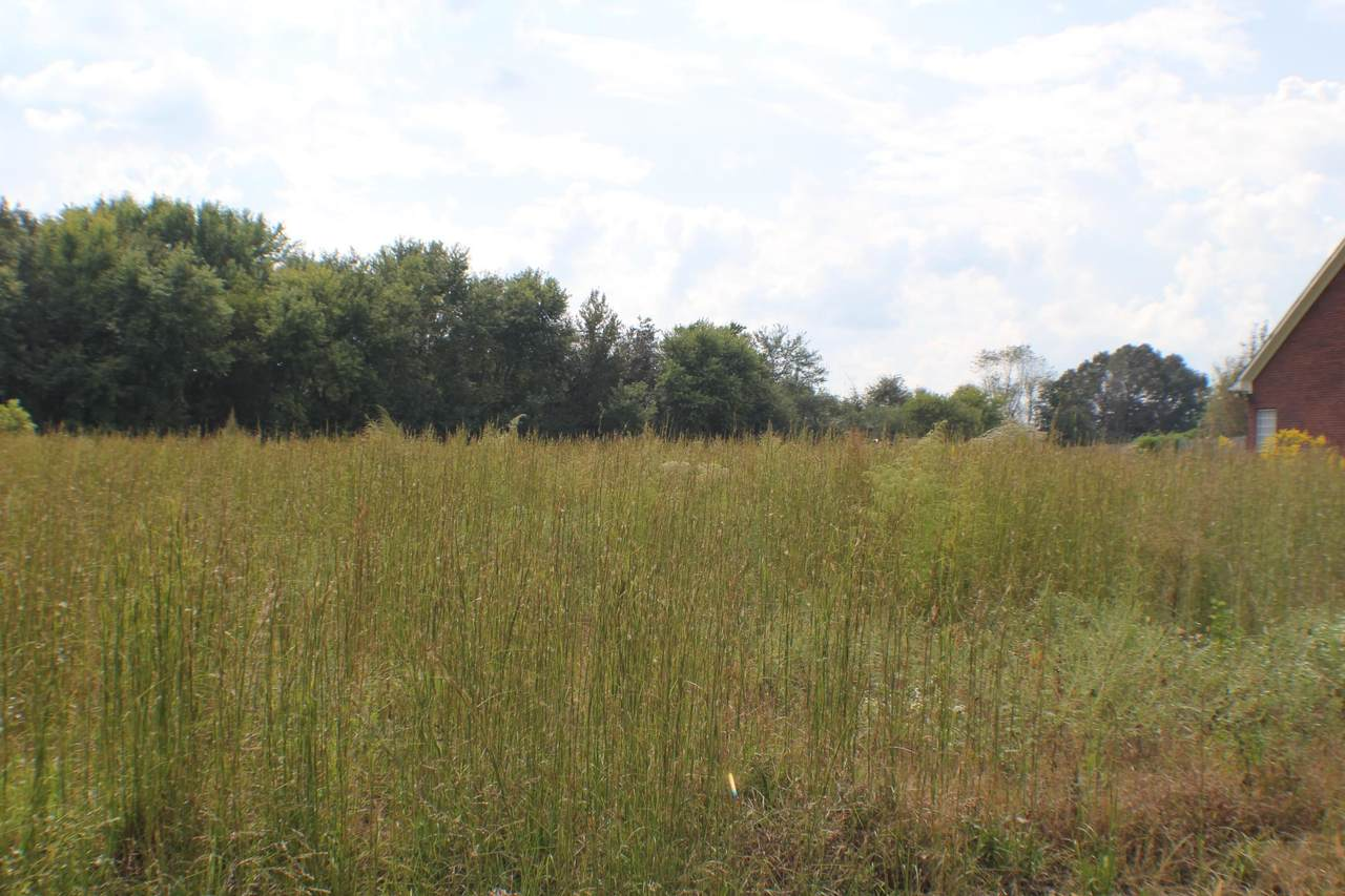 0 Co Rd 388 - Photo 1