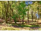 4191 Co Rd 1669 - Photo 3