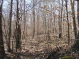 75 Cove Creek Rd - Photo 1