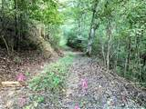 558 Co Rd 53 - Photo 4