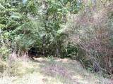 558 Co Rd 53 - Photo 6