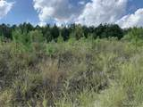 558 Co Rd 53 - Photo 9