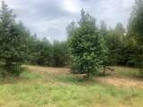 540 Co Rd 156 - Photo 17