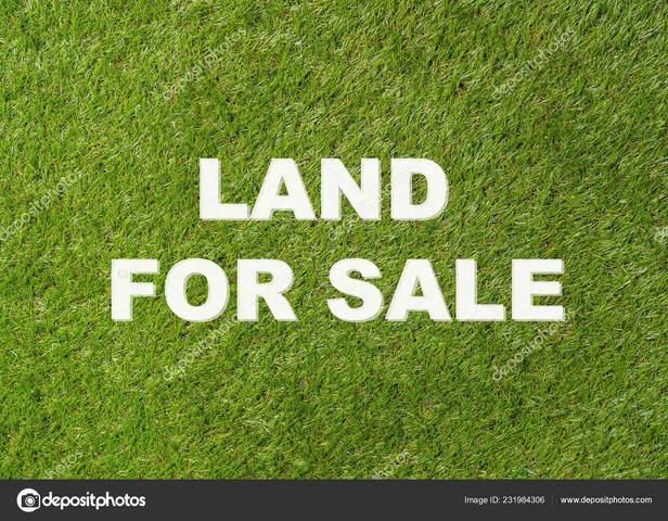 317 Hickory Park Rd, Killen, AL 35645 (MLS #166562) :: MarMac Real Estate