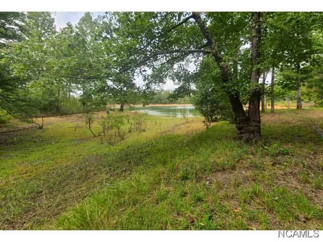LOT 130 Co Rd 177, Crane Hill, AL 35053 (MLS #377496) :: MarMac Real Estate