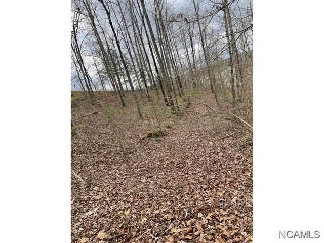 0 Co Rd 870, Crane Hill, AL 35053 (MLS #427193) :: MarMac Real Estate