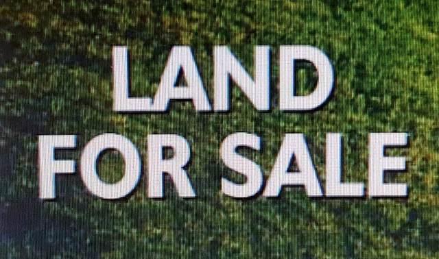 0 Youngblood Wy, Killen, AL 35645 (MLS #427670) :: Coldwell Banker Elite Properties