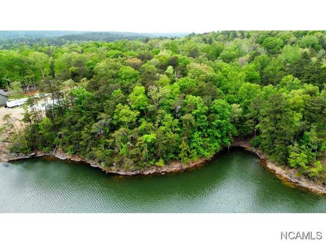LOT 24 Edgewater Point, Double Springs, AL 35553 (MLS #427849) :: Amanda Howard Sotheby's International Realty