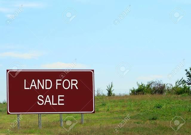 0 Ligon Springs Ln, Tuscumbia, AL 35674 (MLS #429438) :: MarMac Real Estate