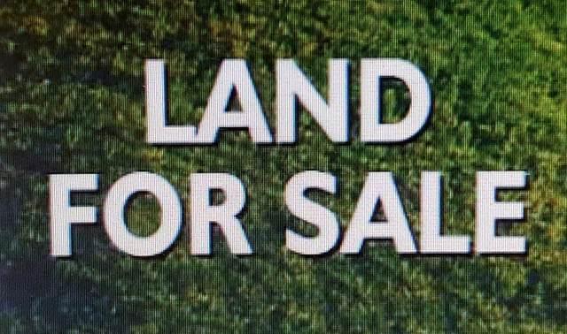 000 Hobson St W, Tuscumbia, AL 35674 (MLS #429919) :: MarMac Real Estate