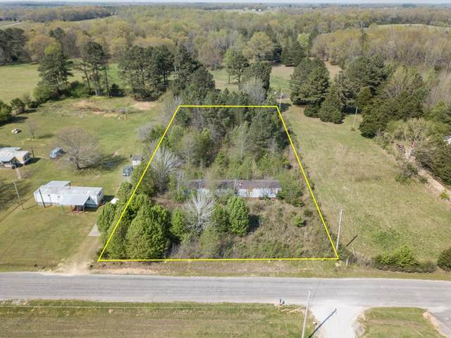 0 Cr 558, Rogersville, AL 35652 (MLS #430026) :: MarMac Real Estate