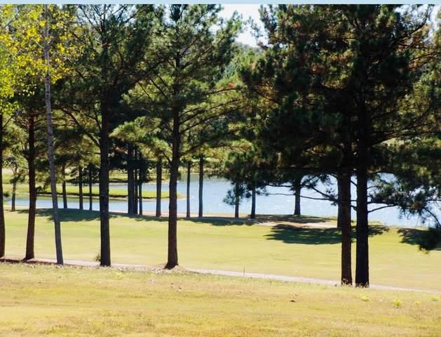 000 Twin Pines Cr, Littleville, AL 35654 (MLS #430489) :: MarMac Real Estate