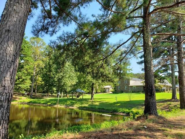 463 County Hwy 81, Hamilton, AL 35570 (MLS #430498) :: MarMac Real Estate