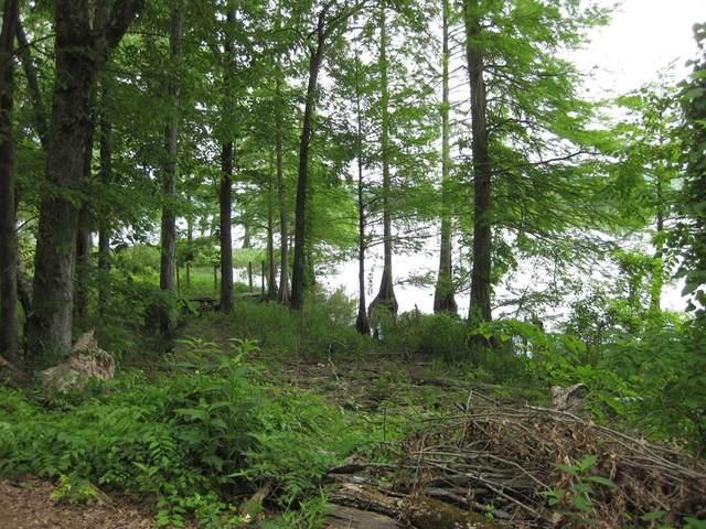 0 Bear Creek Dr, Cherokee, AL 35616 (MLS #430585) :: MarMac Real Estate