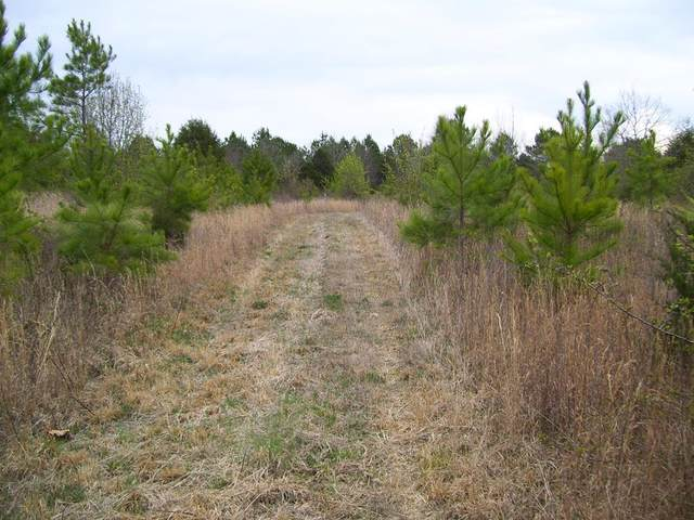 00000 Hwy 101, Rogersville, AL 35652 (MLS #432517) :: MarMac Real Estate