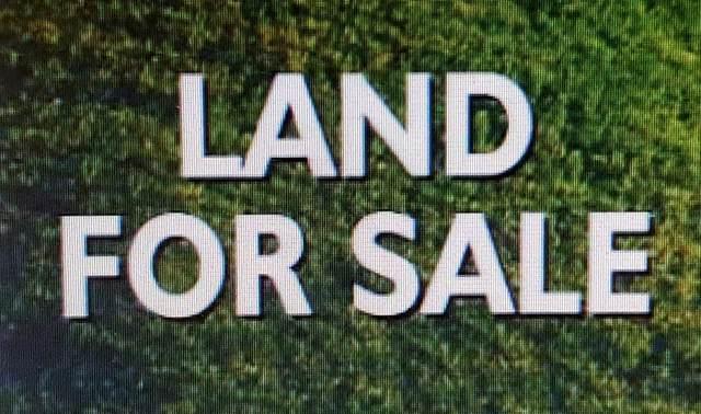 0 Scogin Dr, Tuscumbia, AL 35674 (MLS #432699) :: MarMac Real Estate