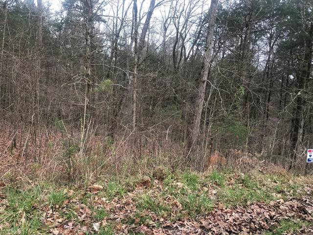 00 Lake Front Dr, Russellville, AL 35653 (MLS #433876) :: MarMac Real Estate