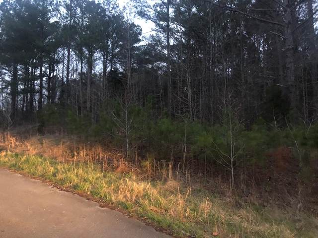 00 Lake Front Dr, Russellville, AL 35652 (MLS #166503) :: MarMac Real Estate