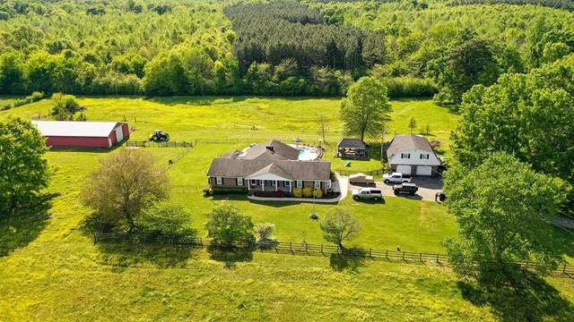 981 Cr 434, Moulton, AL 35650 (MLS #167393) :: MarMac Real Estate