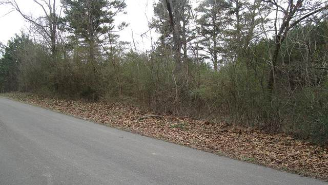00 E Whitten Rd, Russellville, AL 35653 (MLS #434377) :: MarMac Real Estate