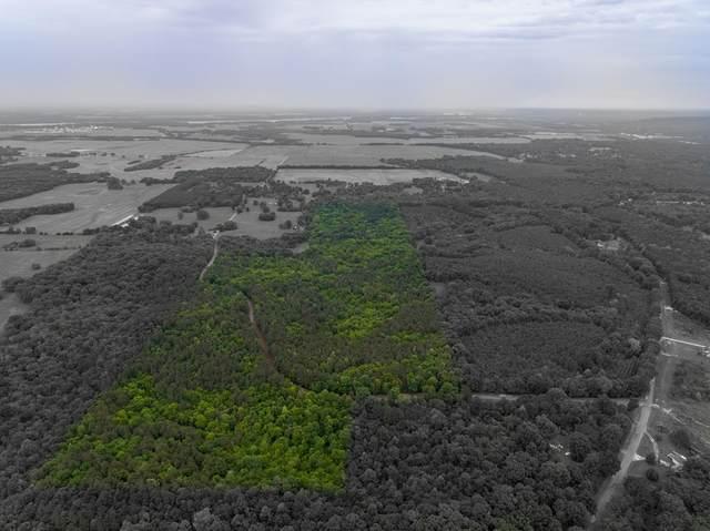 500 Beacon Point Rd, Cherokee, AL 35616 (MLS #167605) :: MarMac Real Estate