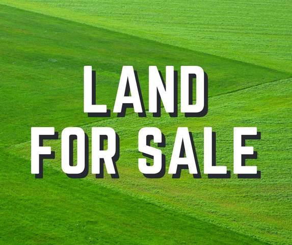 000 Barnett Pl, Tuscumbia, AL 35674 (MLS #434738) :: MarMac Real Estate