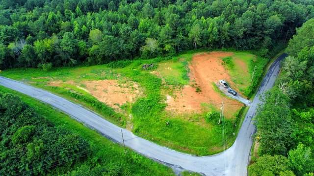 4221 Co Rd 310, Crane Hill, AL 35053 (MLS #500040) :: MarMac Real Estate