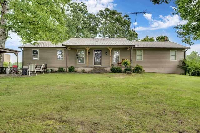 1731 County Road 3159, Houston, AL 35572 (MLS #500120) :: MarMac Real Estate