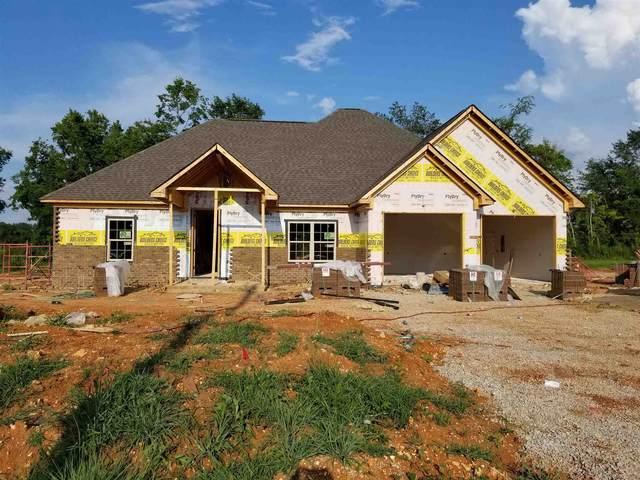 1203 Glendora Ave., Tuscumbia, AL 35674 (MLS #500250) :: MarMac Real Estate
