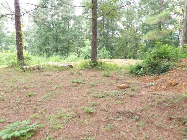 Lot 28 Grandview Shores, Crane Hill, AL 35053 (MLS #500321) :: MarMac Real Estate