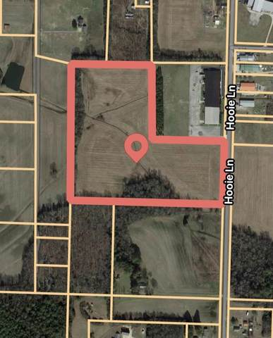 0 County Road 77, Rogersville, AL 35652 (MLS #500470) :: MarMac Real Estate