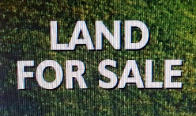 Lot 23 Pride Estates Rd, Tuscumbia, AL 35674 (MLS #500477) :: MarMac Real Estate