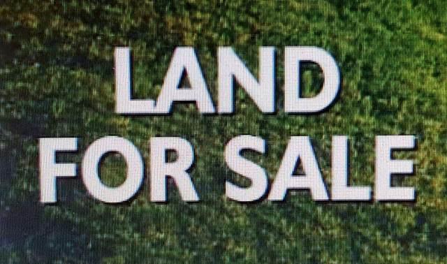 Lot 25 Pride Estates Rd, Tuscumbia, AL 35674 (MLS #500480) :: MarMac Real Estate