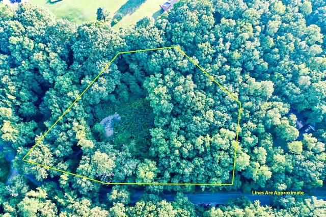 650 County Road 379, Trinity, AL 35673 (MLS #500776) :: MarMac Real Estate