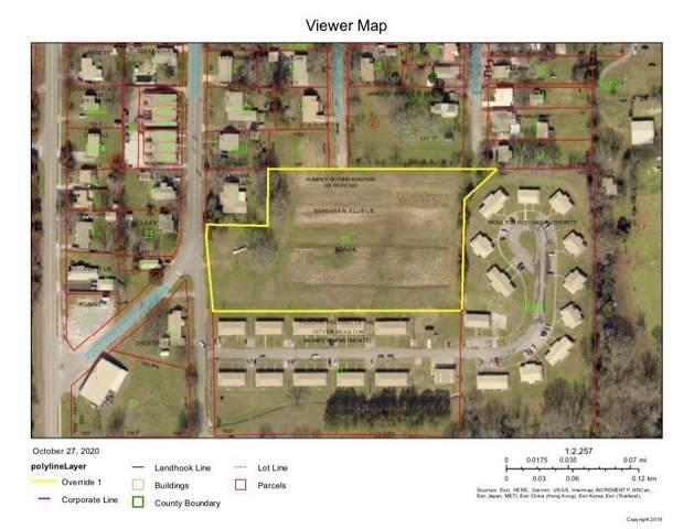 0 Main St, Moulton, AL 35650 (MLS #500800) :: MarMac Real Estate