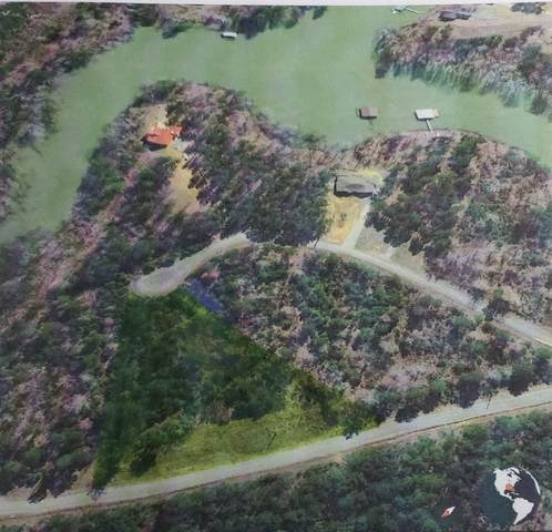 Emerald Valley Estates Lot #40, Houston, AL 35572 (MLS #501352) :: MarMac Real Estate