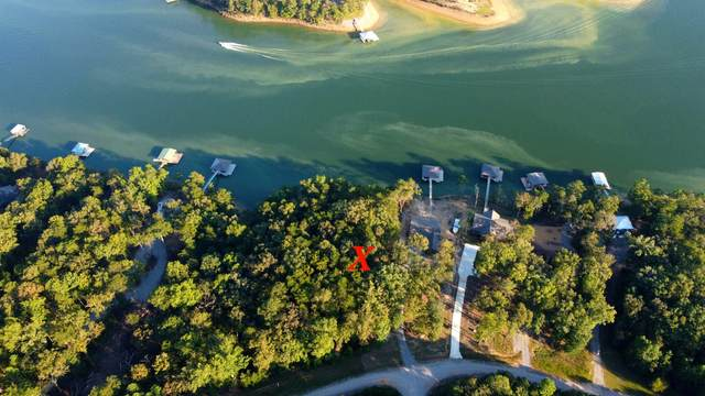 LOT 23 Edgewater Pt, Double Springs, AL 35553 (MLS #501468) :: MarMac Real Estate