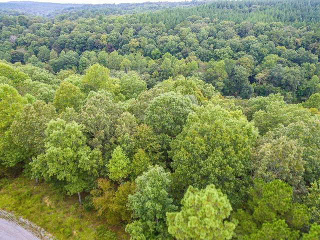 Lot 9 Turkey Bend Dr, Addison, AL 35540 (MLS #501477) :: MarMac Real Estate