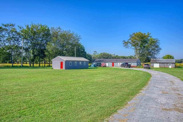 365 Sockwell Ln, Leighton, AL 35646 (MLS #501712) :: MarMac Real Estate