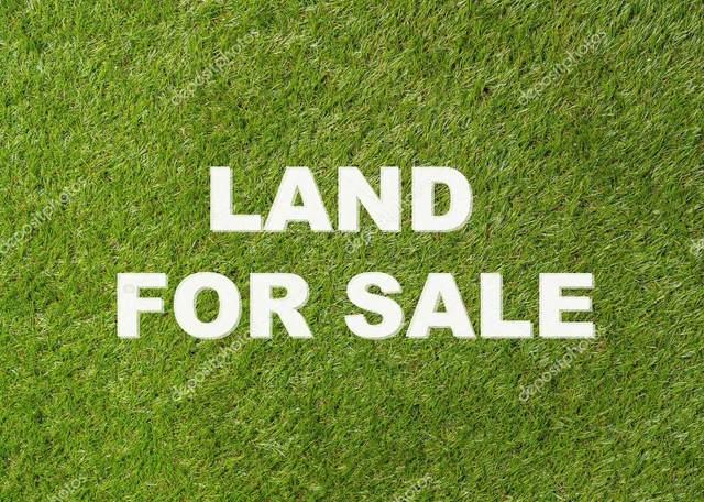 0 Hwy 17, Florence, AL 35630 (MLS #501784) :: MarMac Real Estate