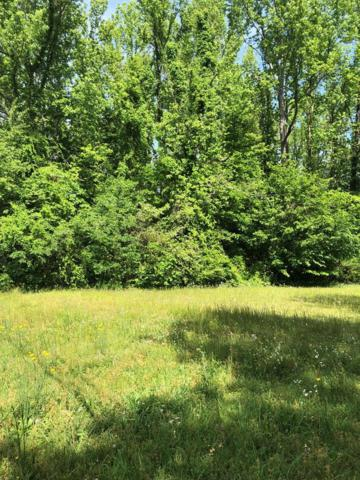 00 Second St E, Muscle Shoals, AL 35661 (MLS #426314) :: MarMac Real Estate